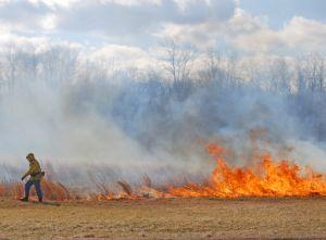 Bezmyślne wypalanie traw. O krok od tragedii...