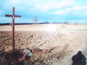 Siny krzyż. Fot. J. Adamski